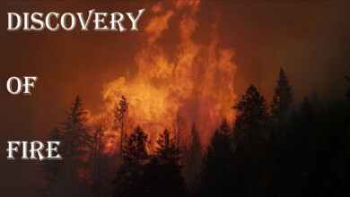 Photo of The Discovery of Fire… Greatest Discovery Ever that Spurred a Technological Revolution